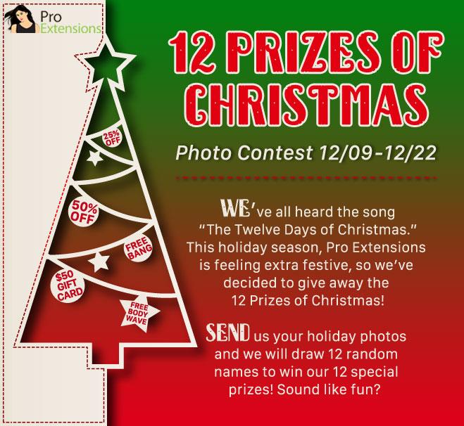 2014 Christmas Contest